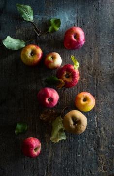Apfelkunde